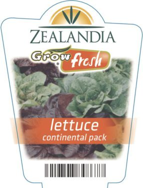 Lettuce Continental Pack