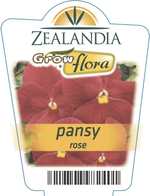 Pansy Rose