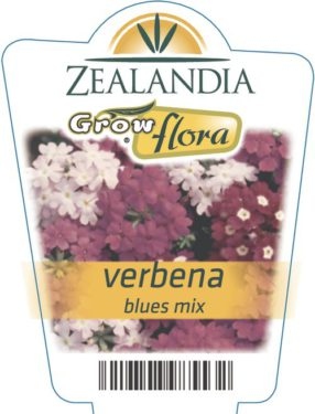 Verbena Blues Mix