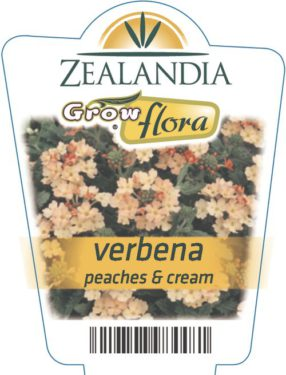Verbena Peaches & Cream