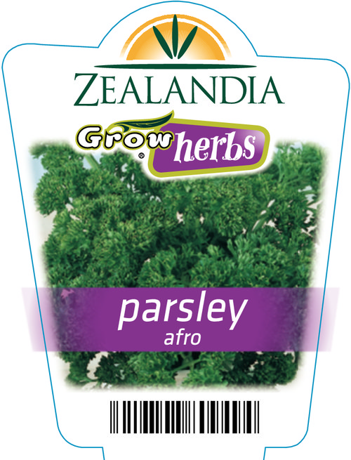 Parsley Afro