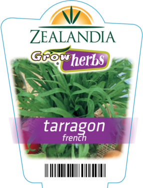 Tarragon French