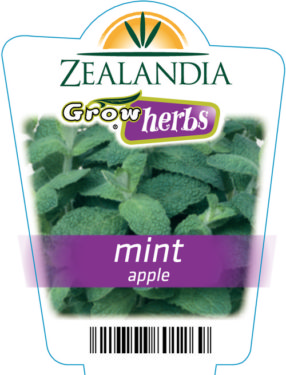 Mint Apple