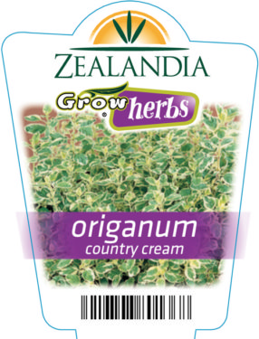 Origanum Country Cream