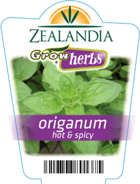 Origanum Hot and Spicy