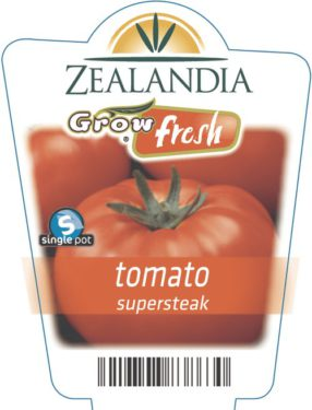 tomato supersteak