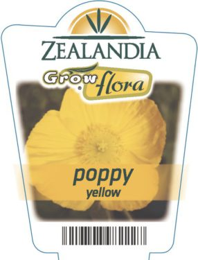 Poppy Yellow