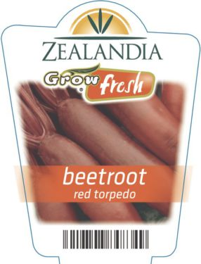 Beetroot Red Torpedo