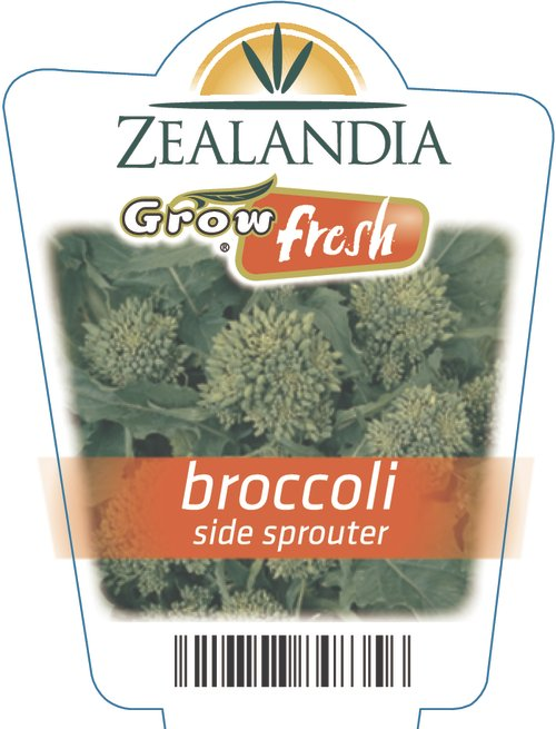 Broccoli Side Sprouter
