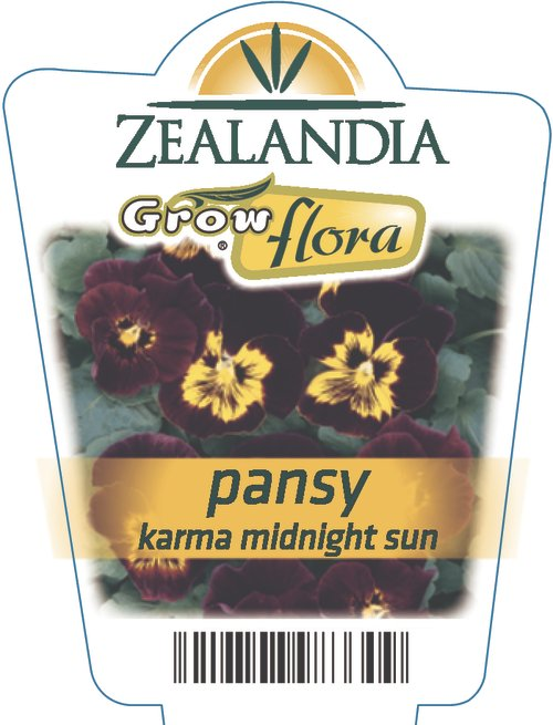 Pansy Karma Midnight Sun
